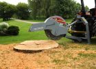 Baumalight 3PH Stump Grinder