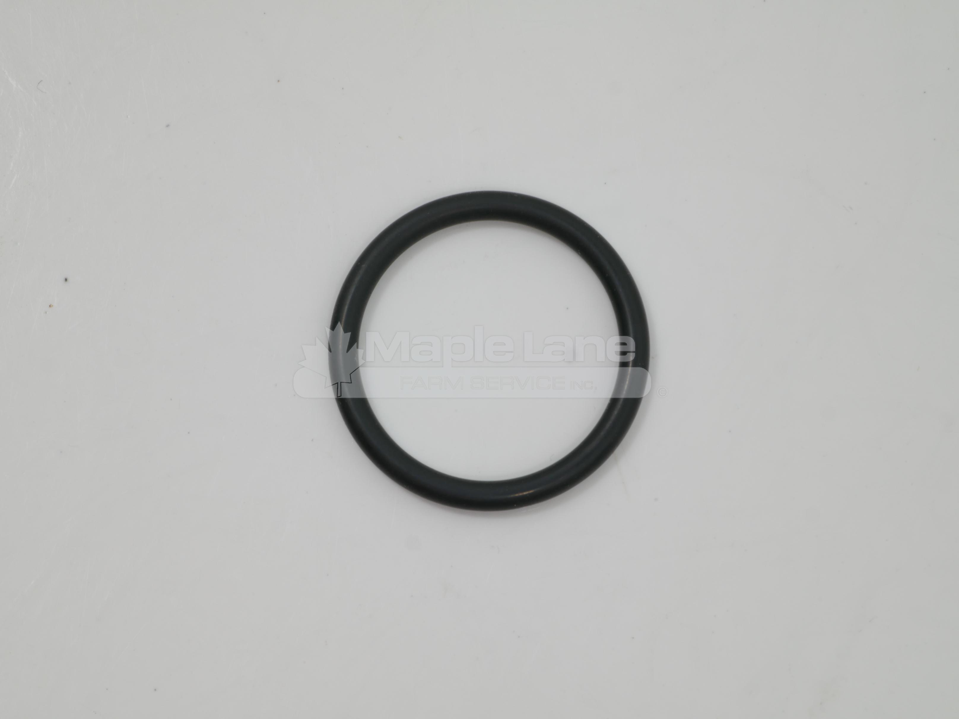 72313445 O-Ring 20.3 x 2.4
