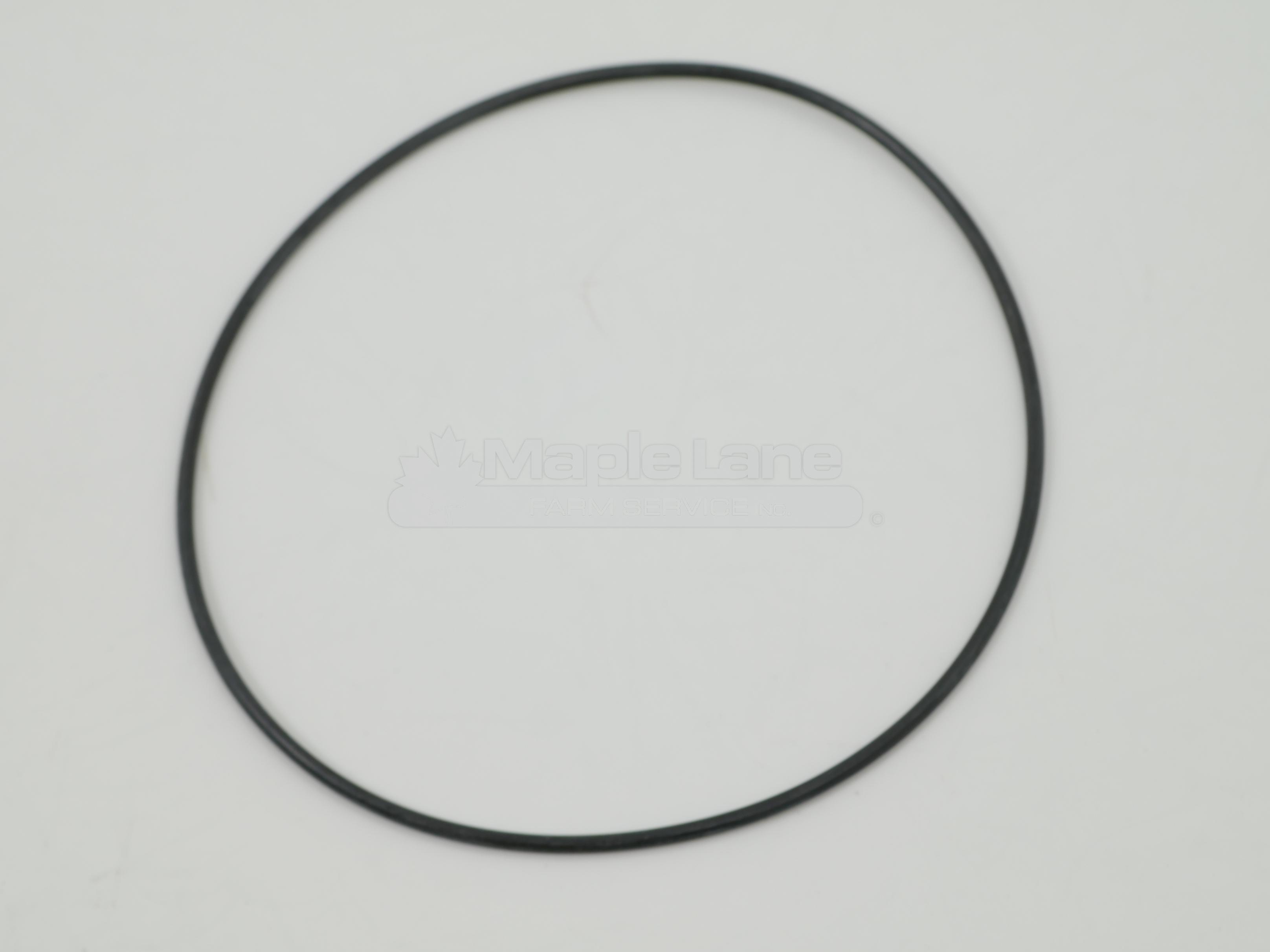 061574 o-ring