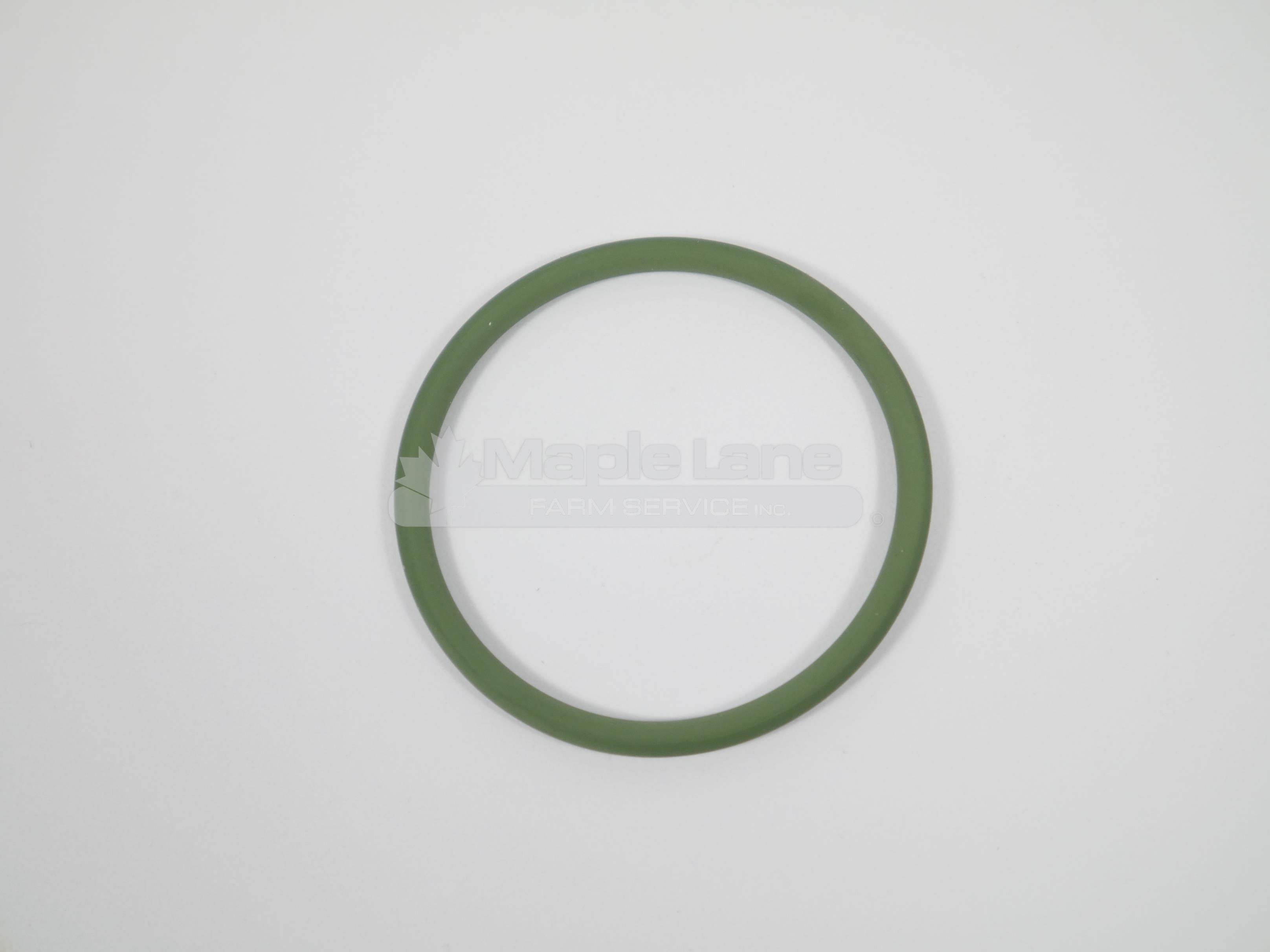 242020 O-Ring