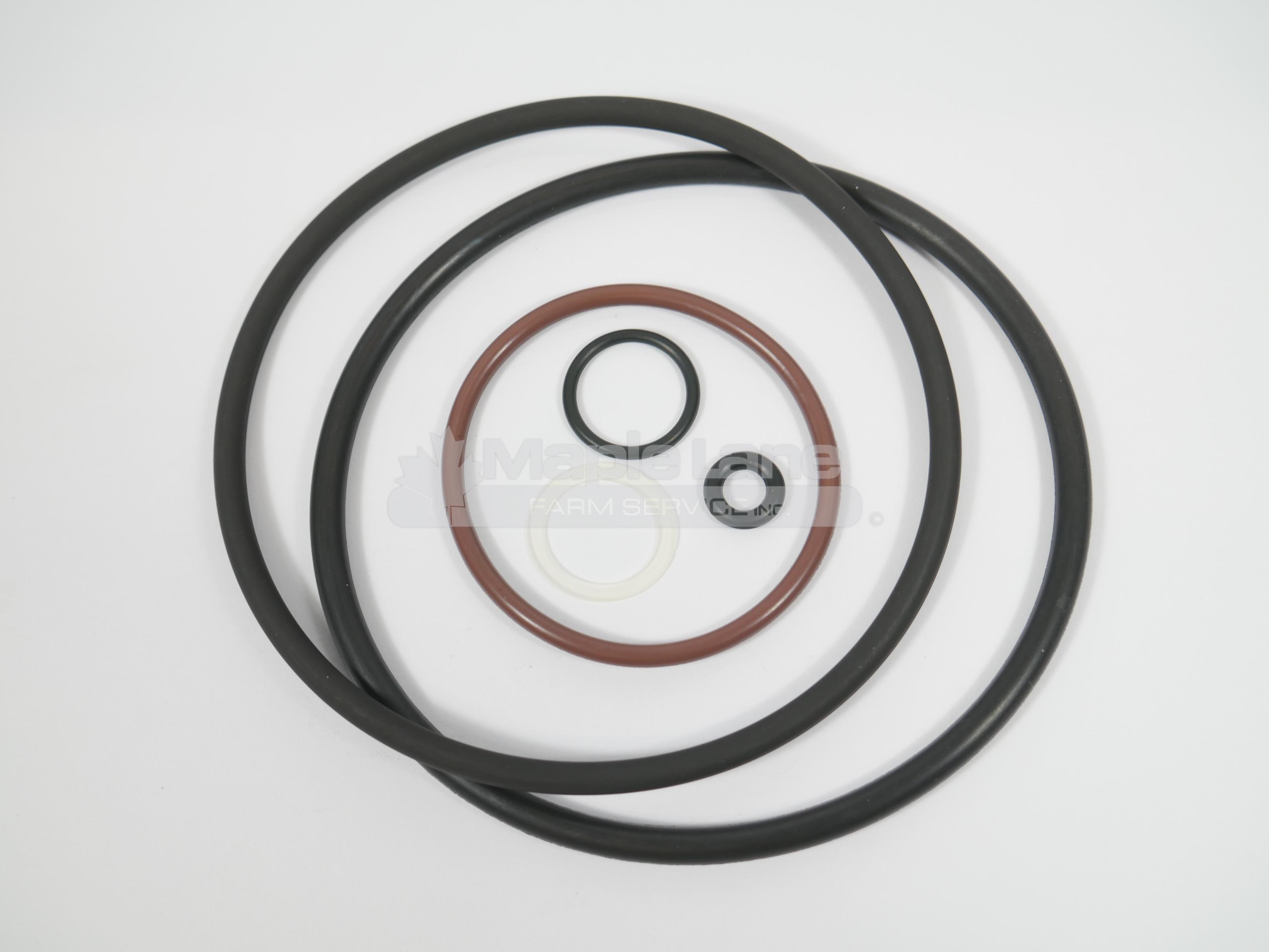 741827 seal kit cyclone