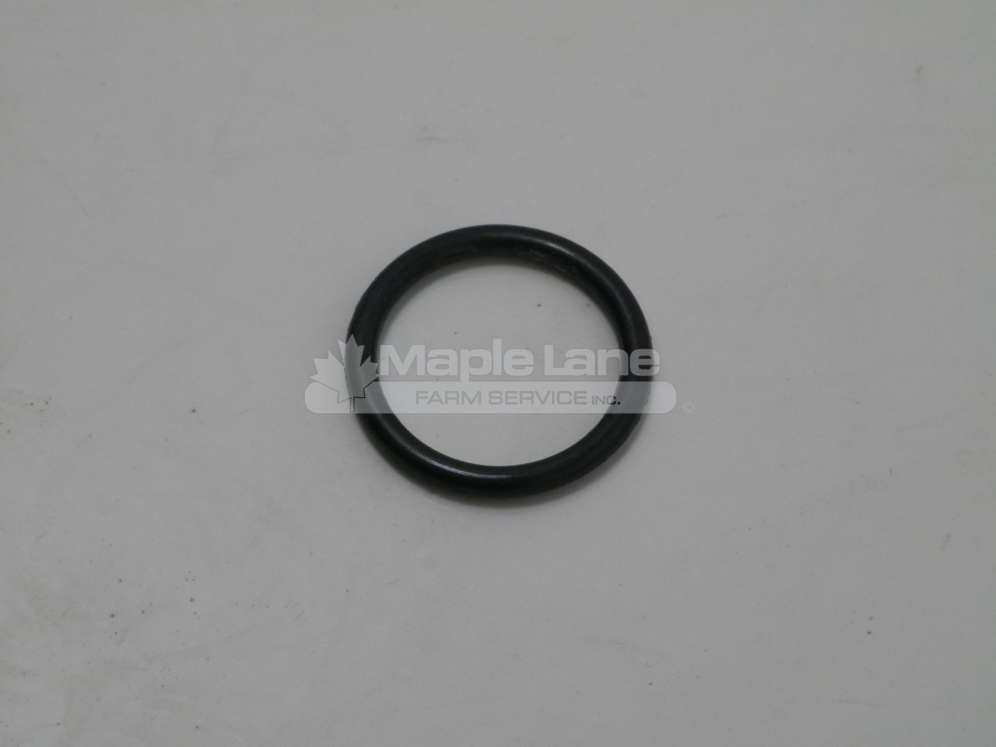 72493820 O-Ring
