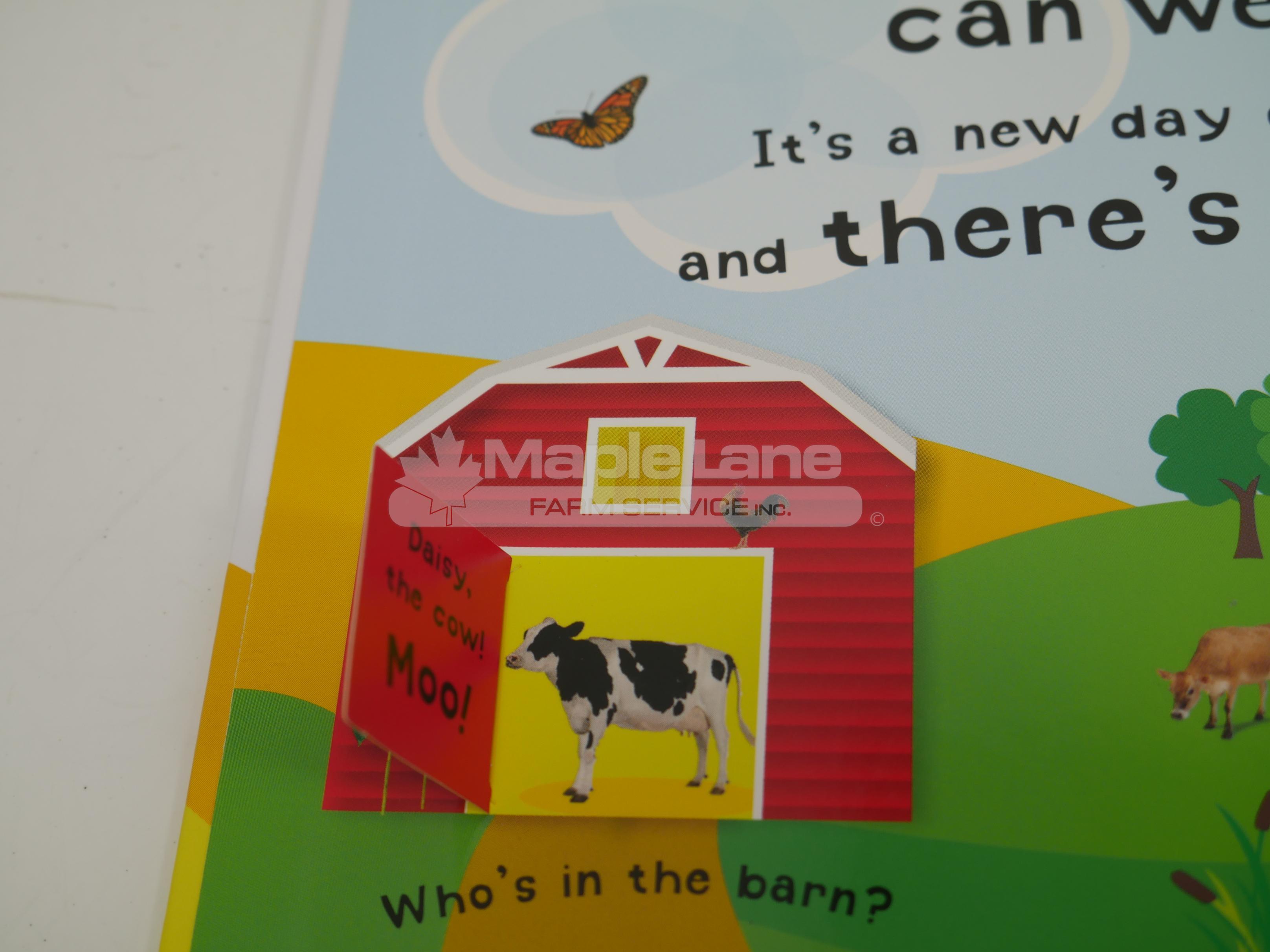massey flap and sound children book