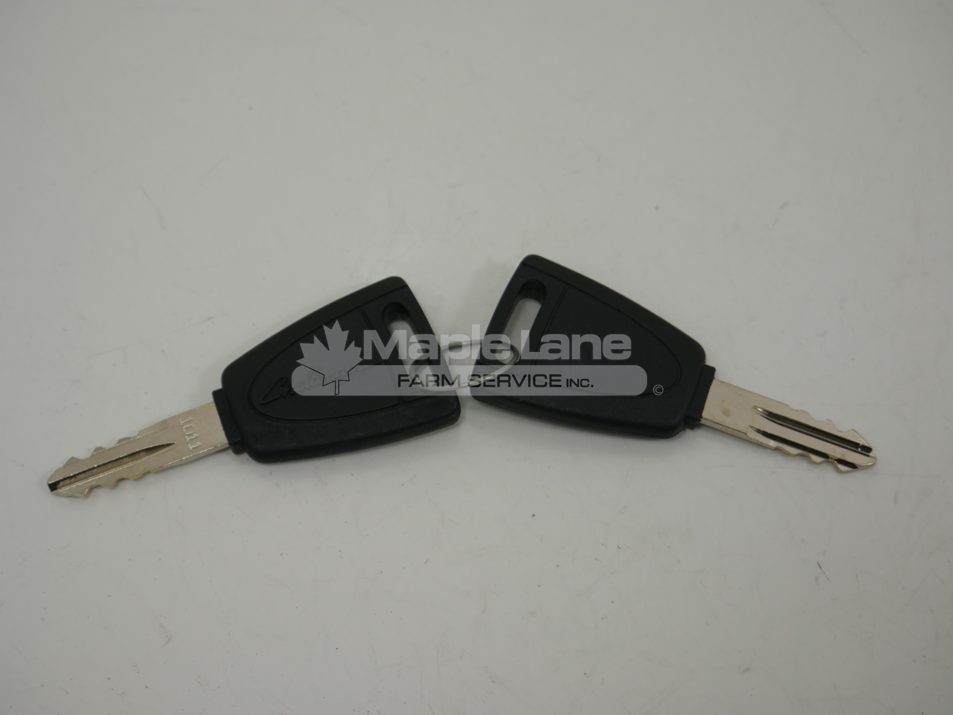 4297515M91 Door Key Set