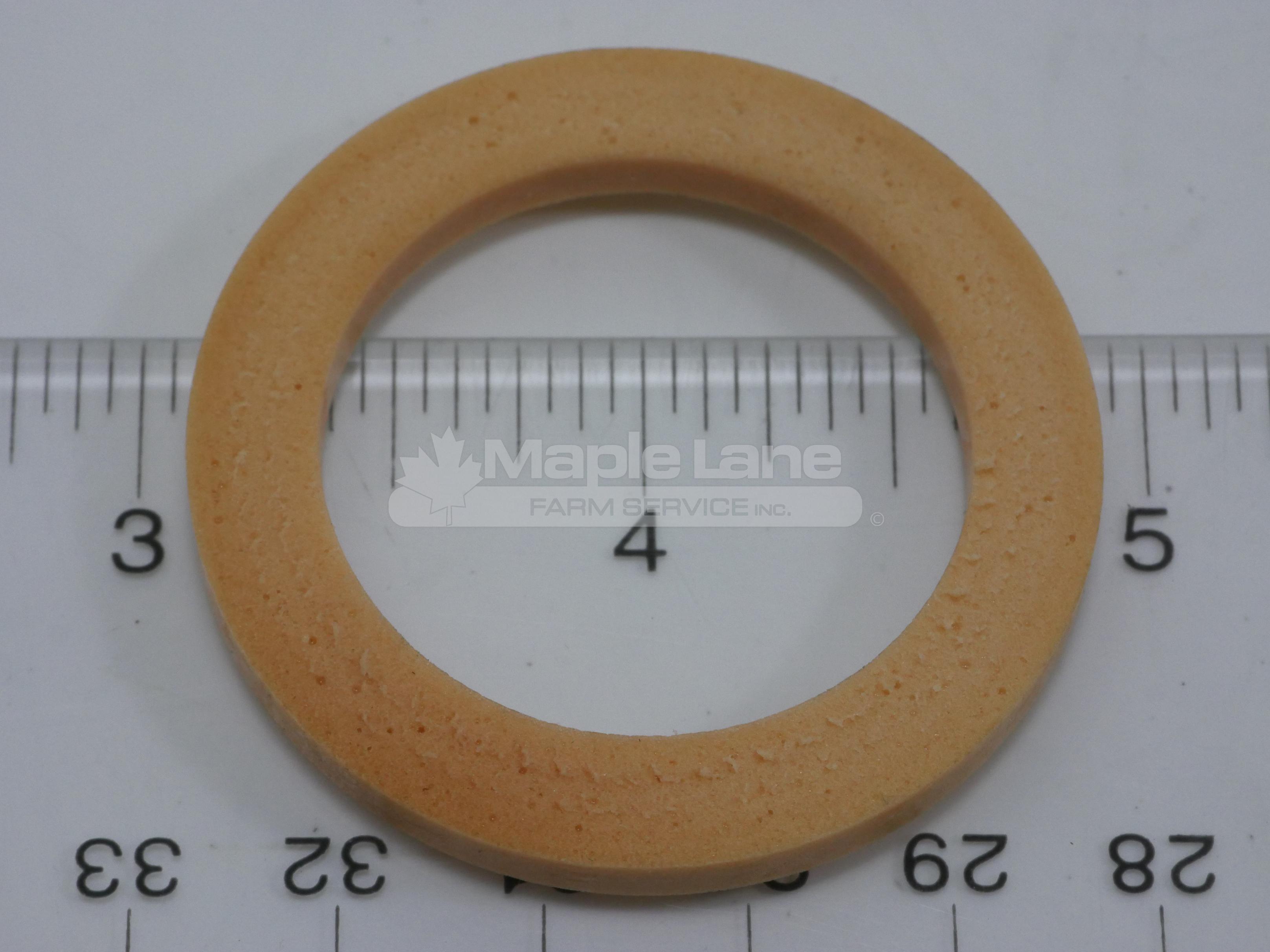 72317131 Sealing Washer