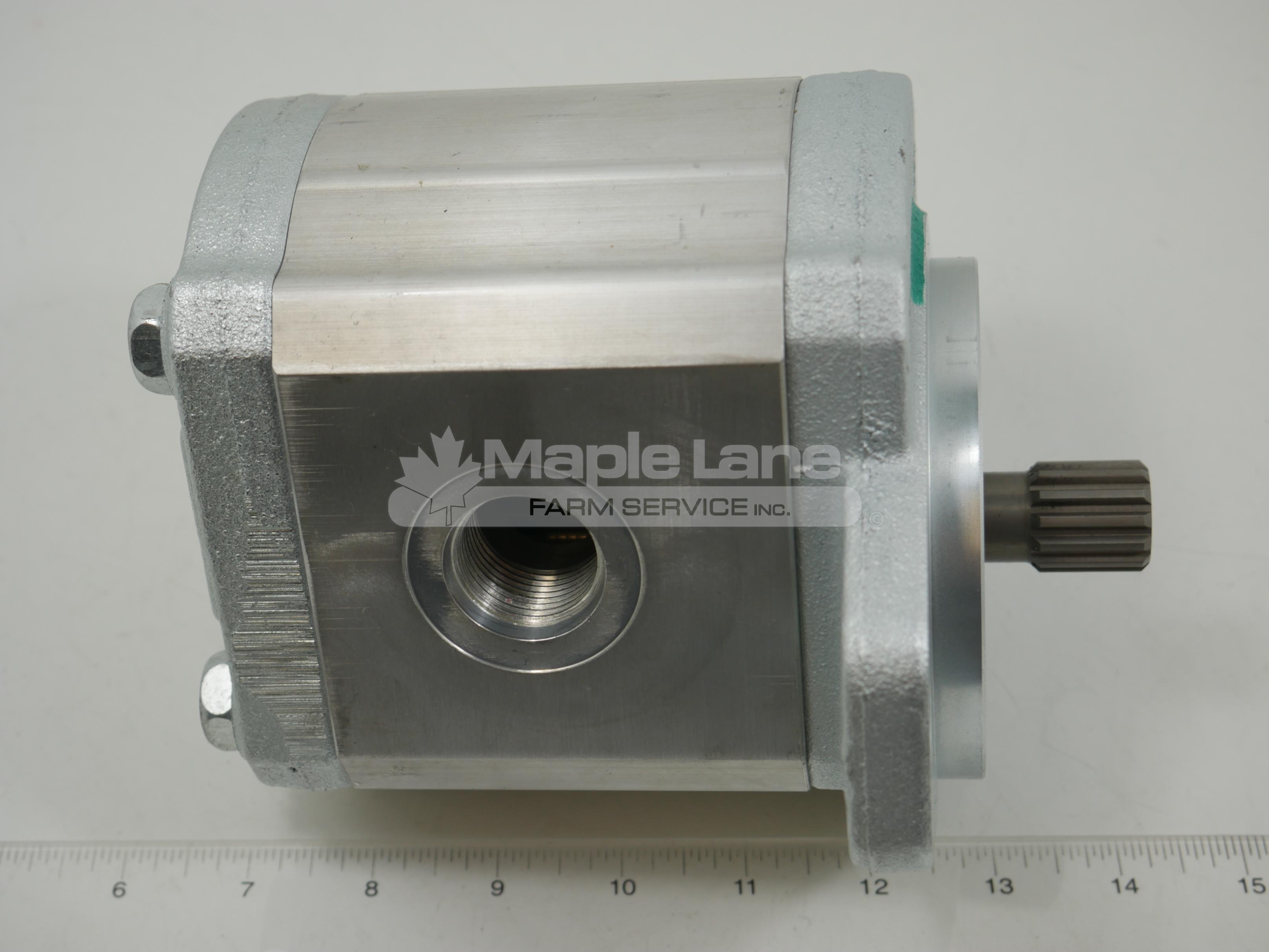 135930 Gear Pump 2.01 Single