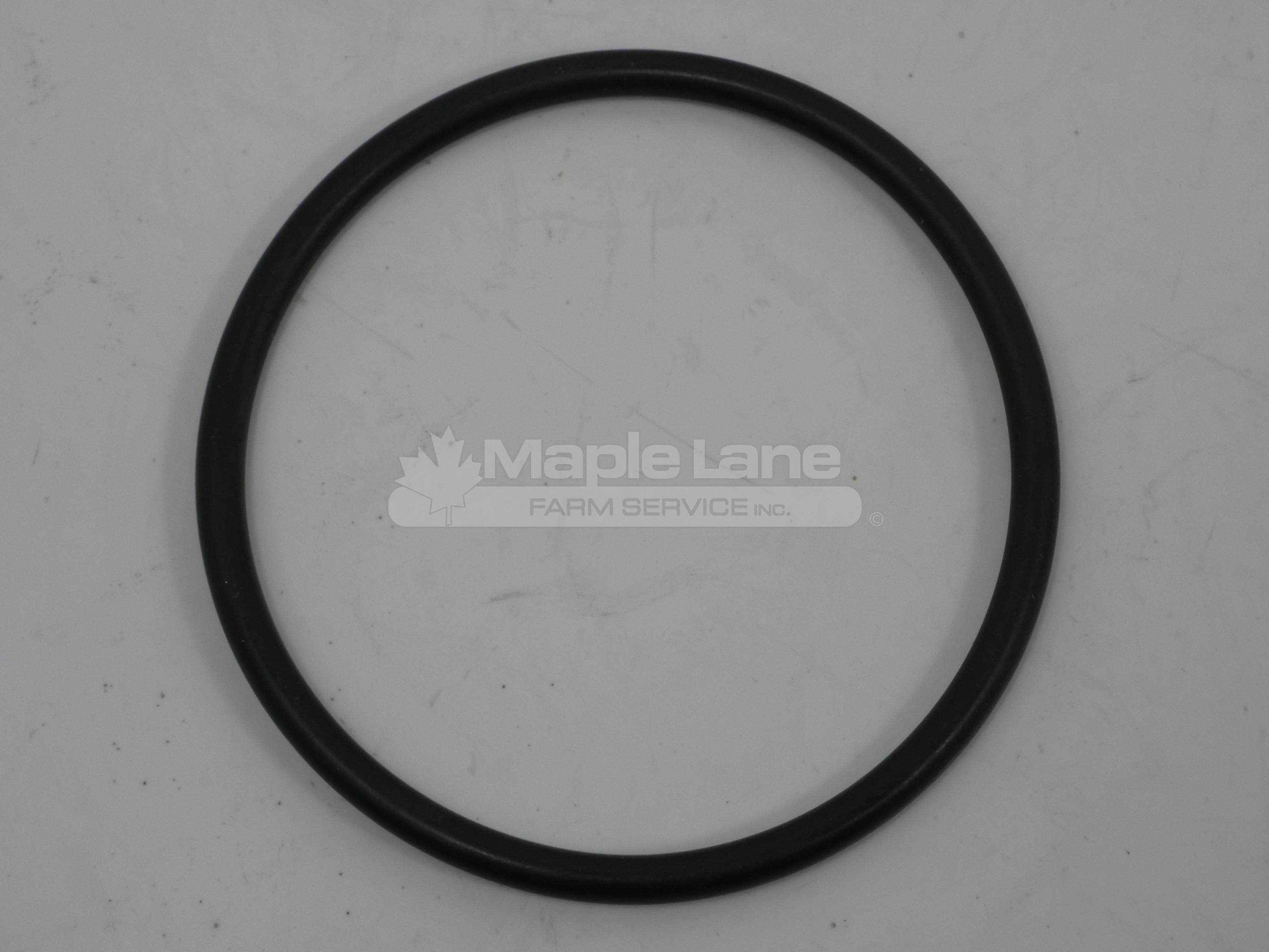 3009744X1 O-Ring