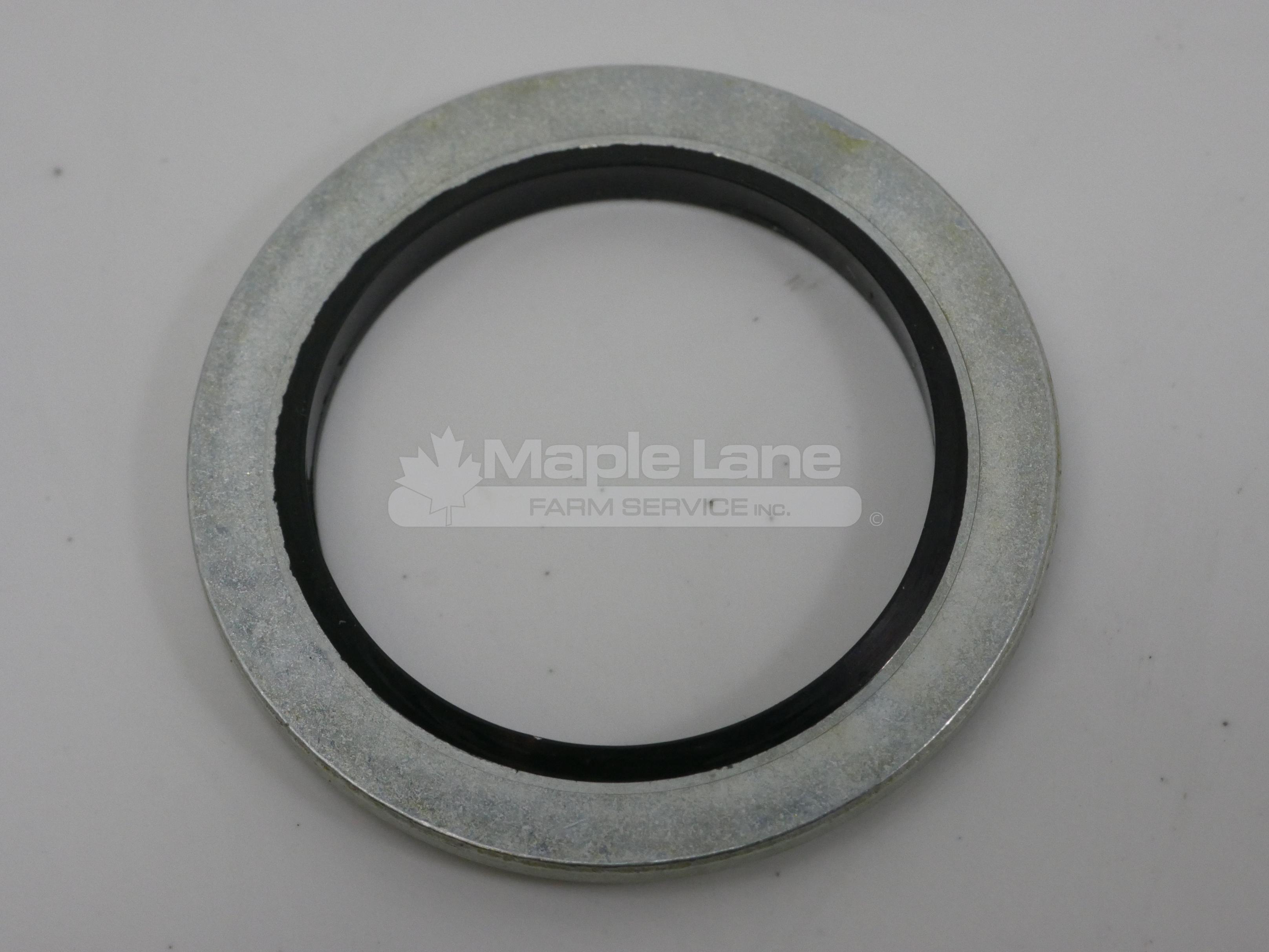 3427185M1 Sealing Washer