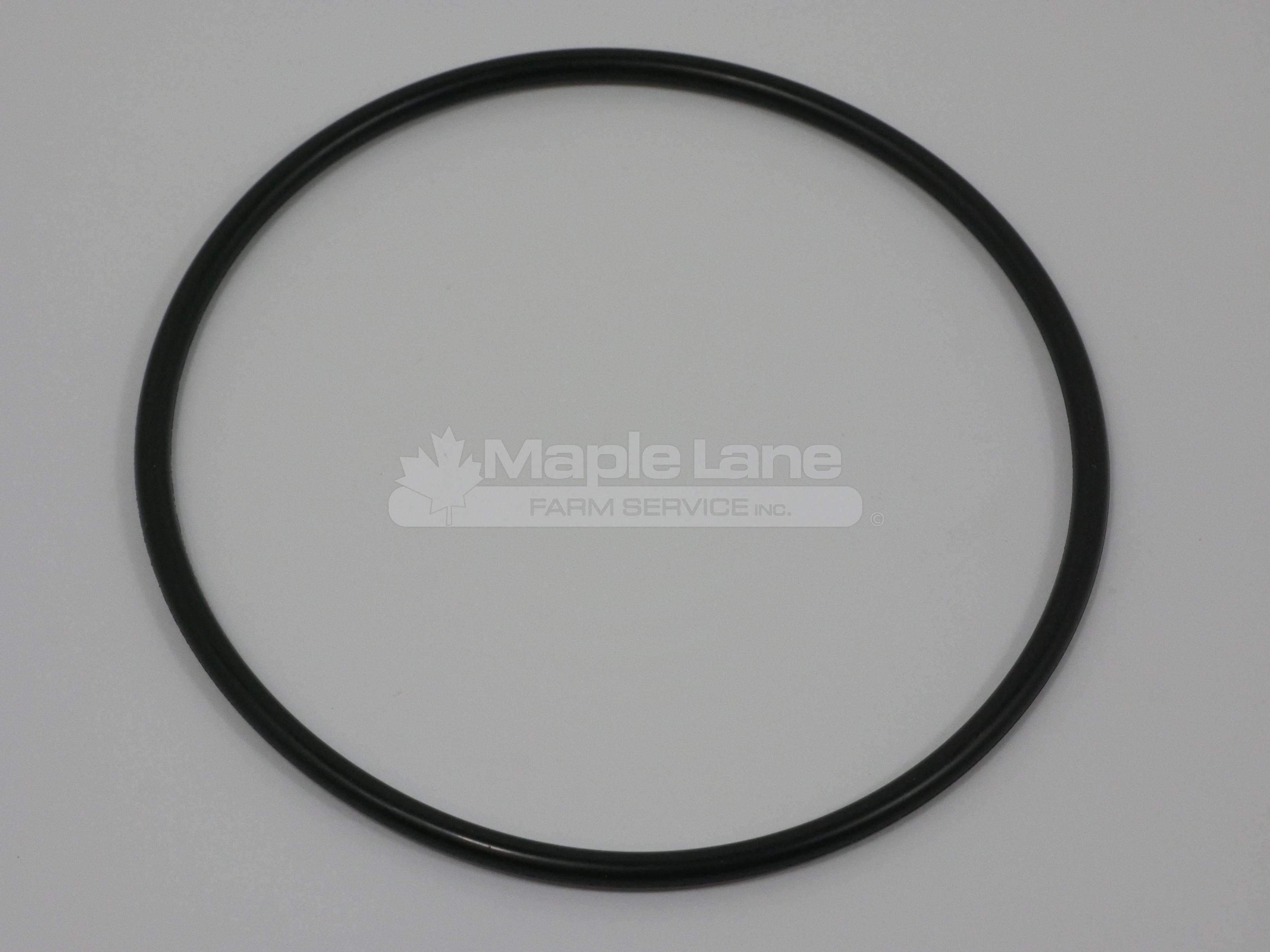 3607436M1 O-Ring