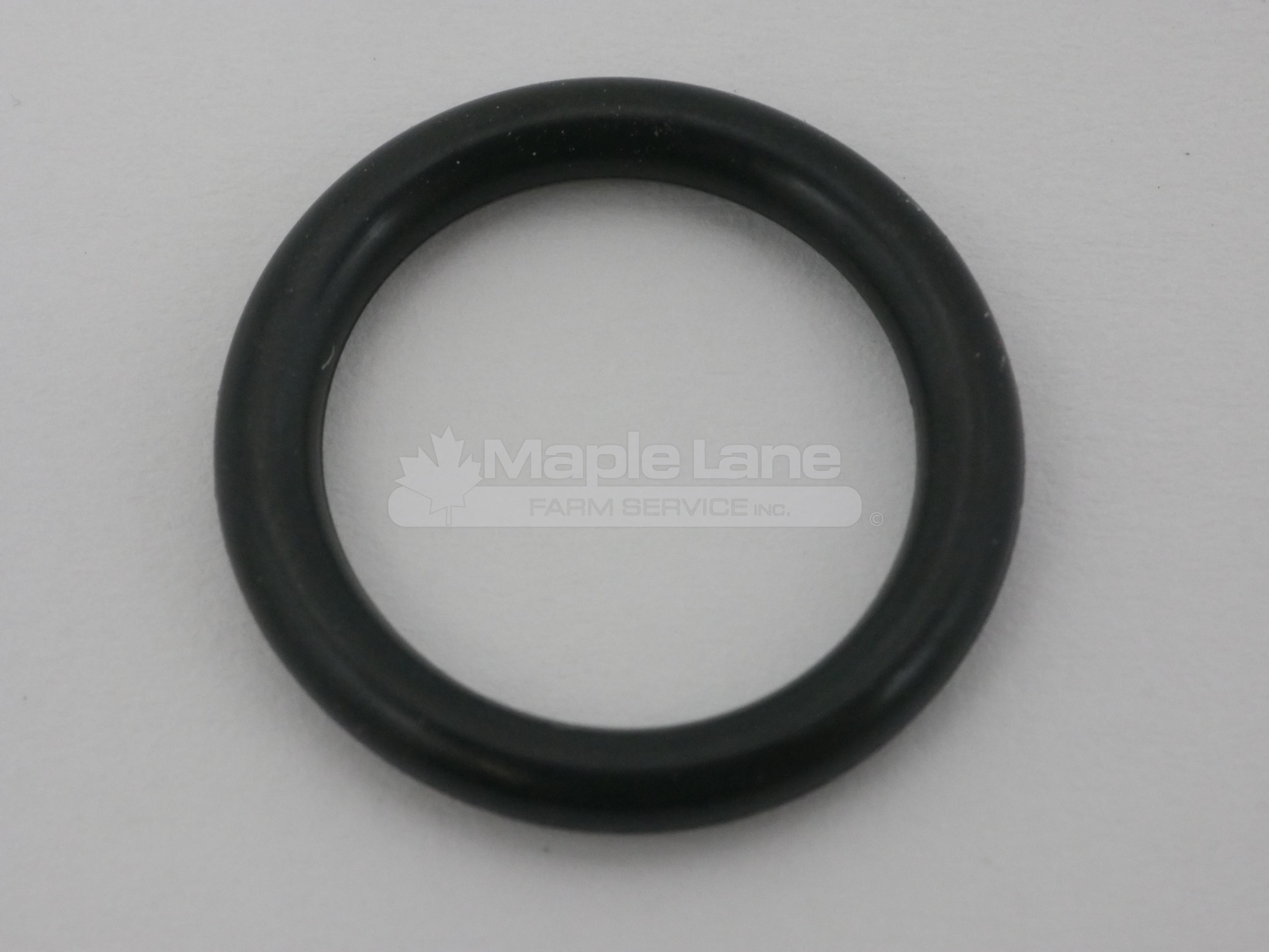 138101 O-Ring