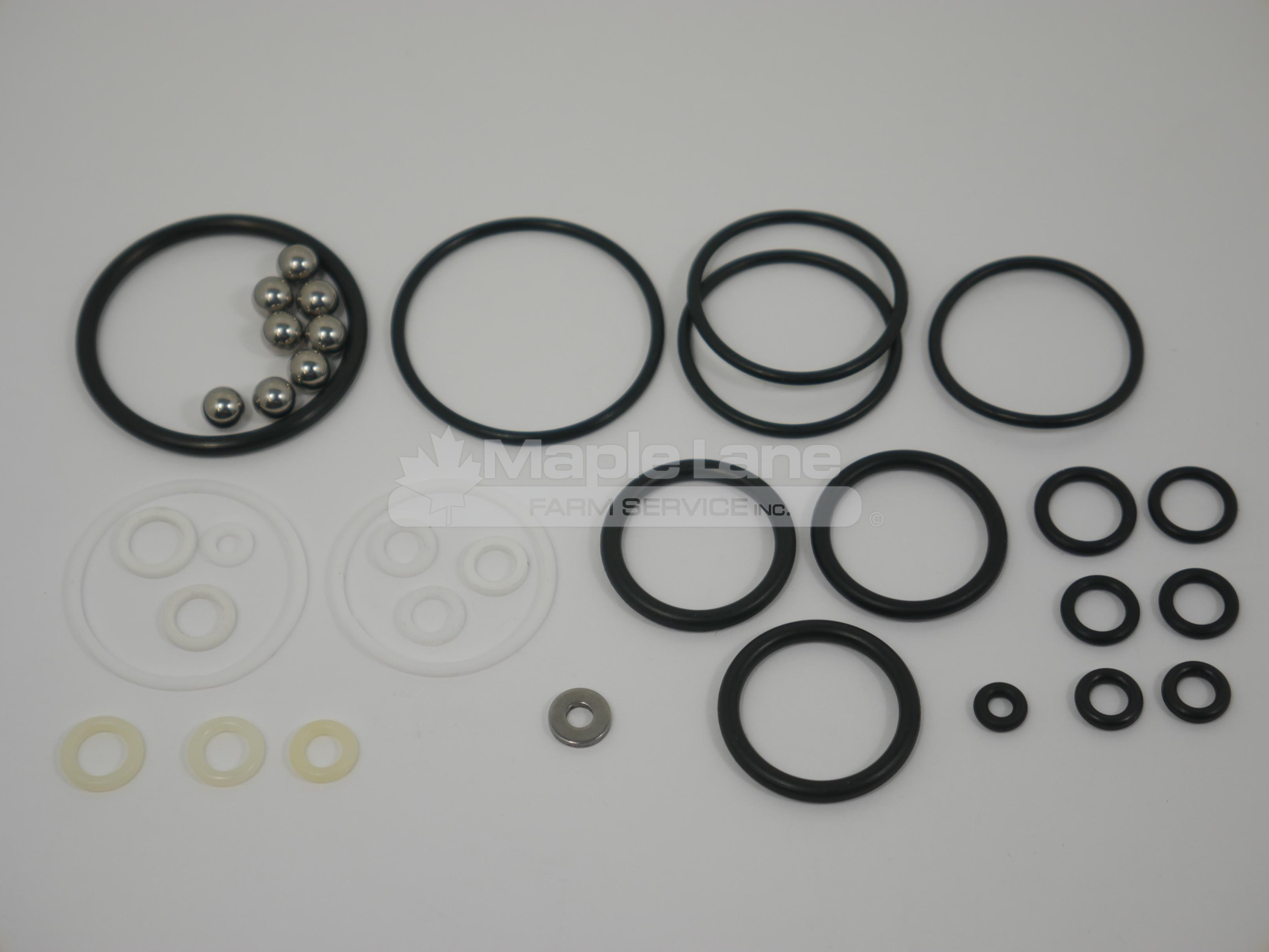 3902066M91 Hydraulic Seal Kit