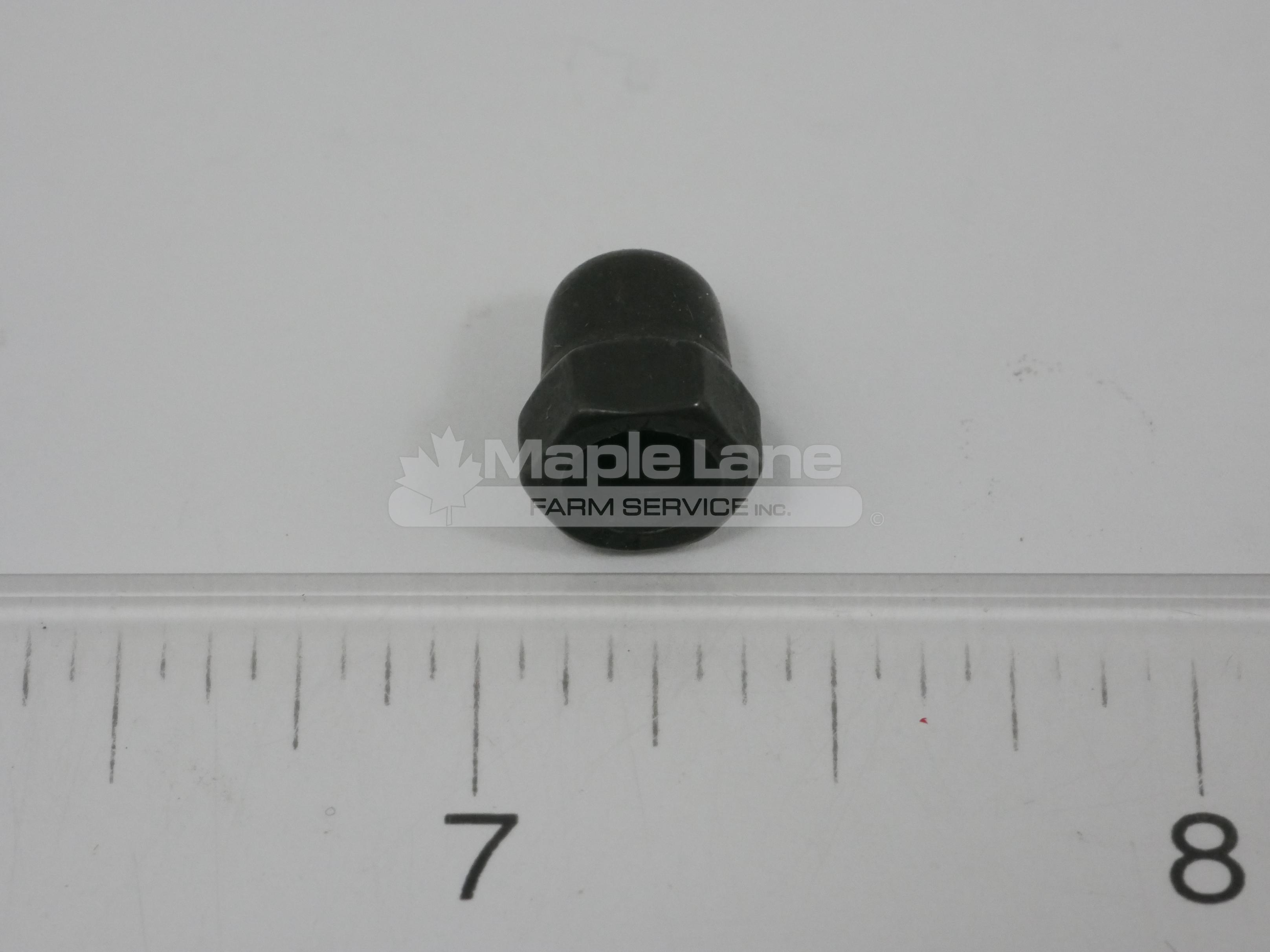 242985 M5 Acorn Nut