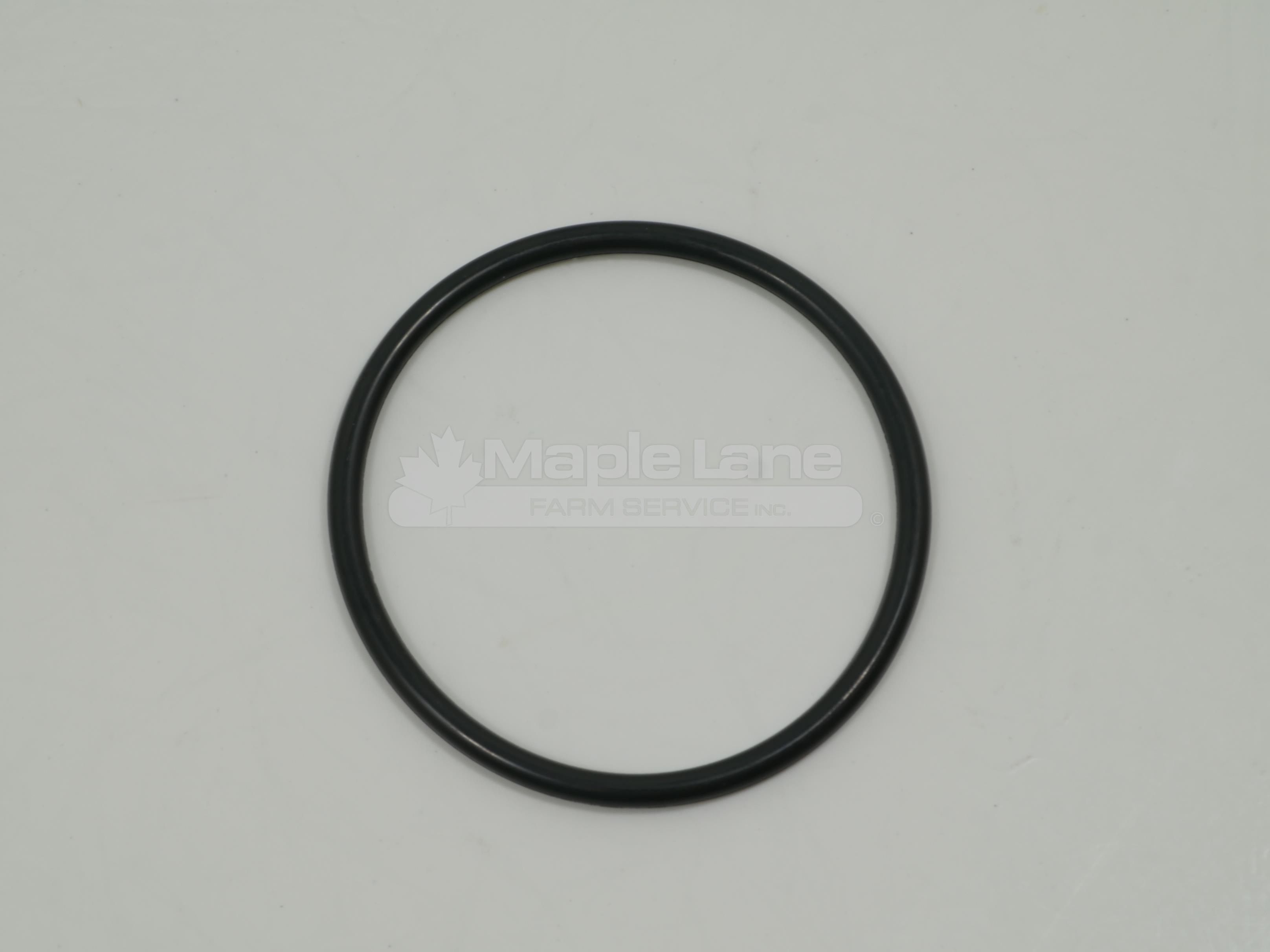 3710533M1 O-Ring