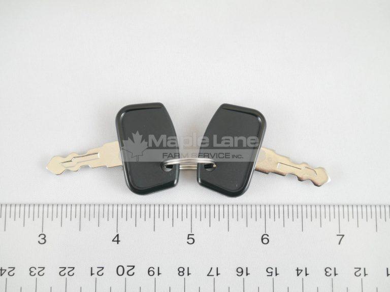 4267379M1 Ignition Keys