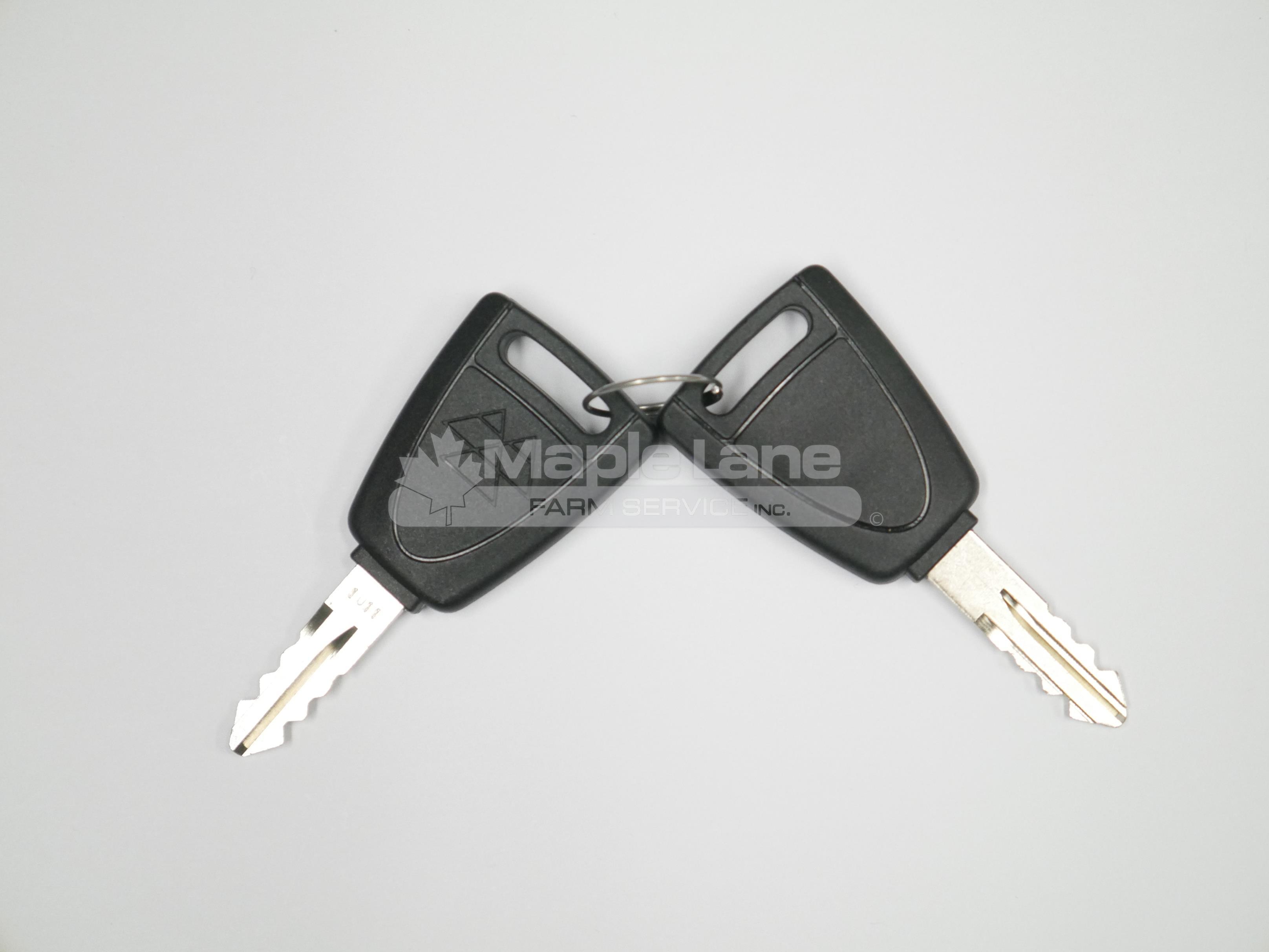 4297513M91 Two Door Keys