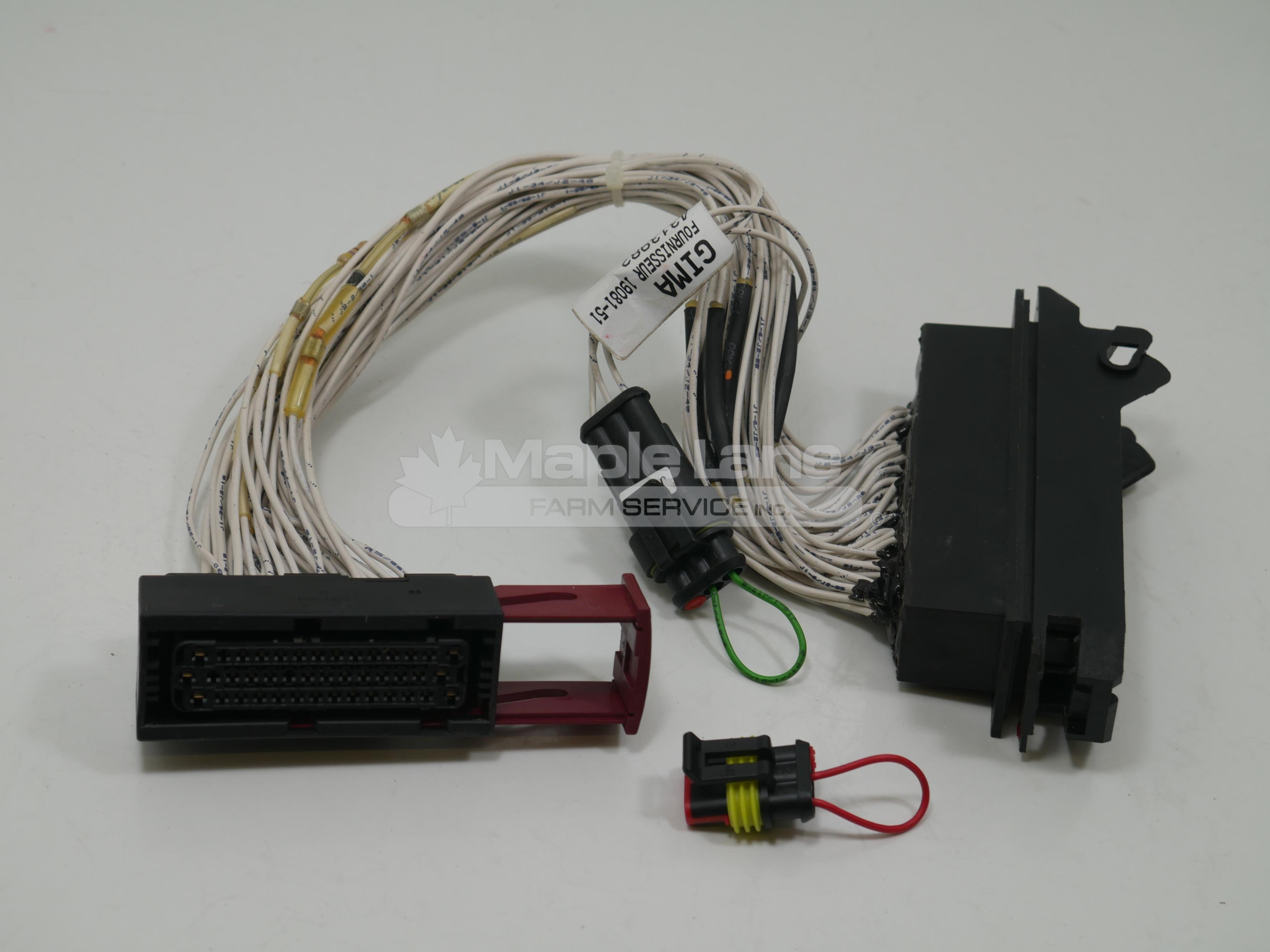 4313982M1 Harness Kit