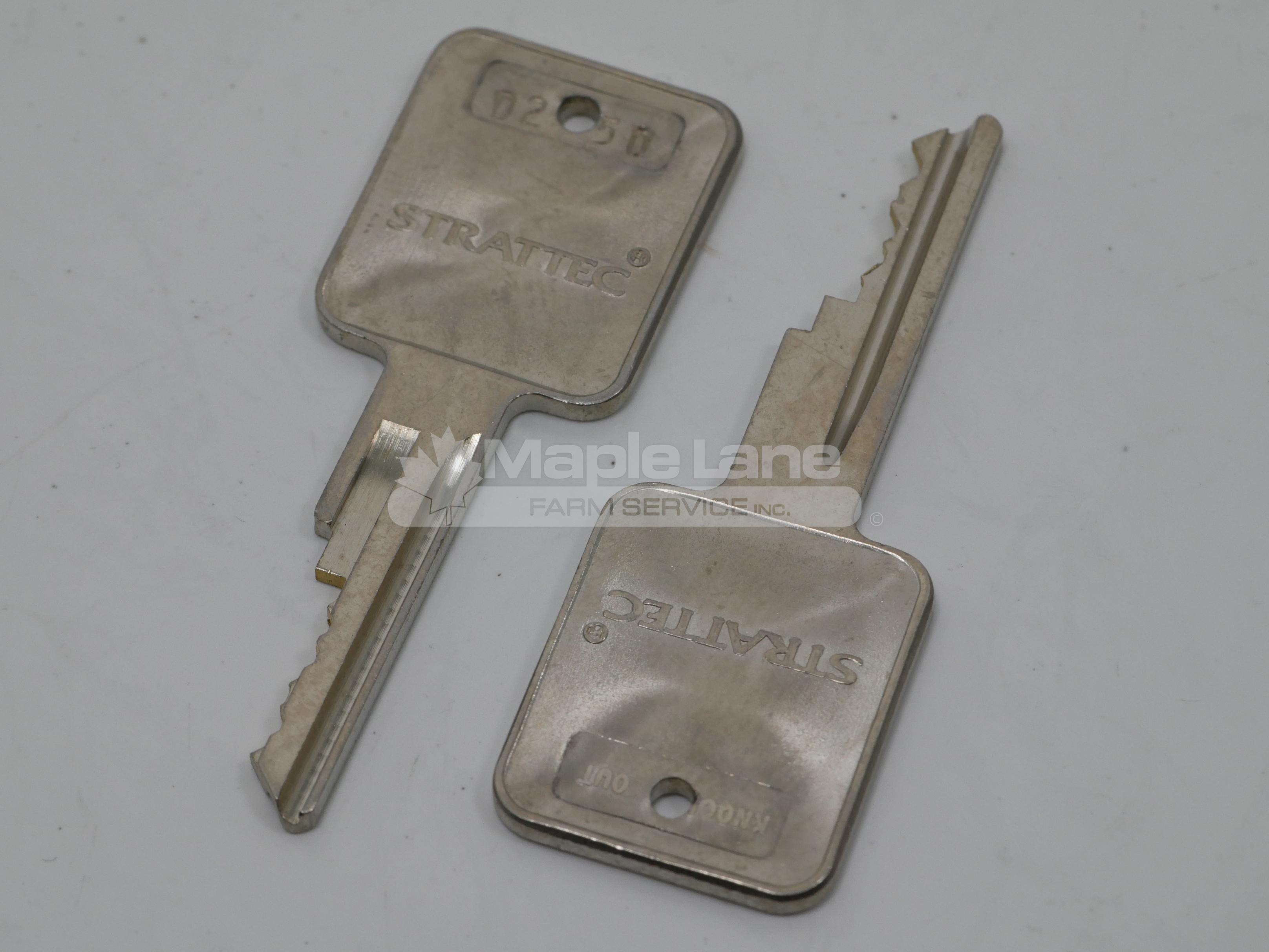 243561 2 Front Door Keys