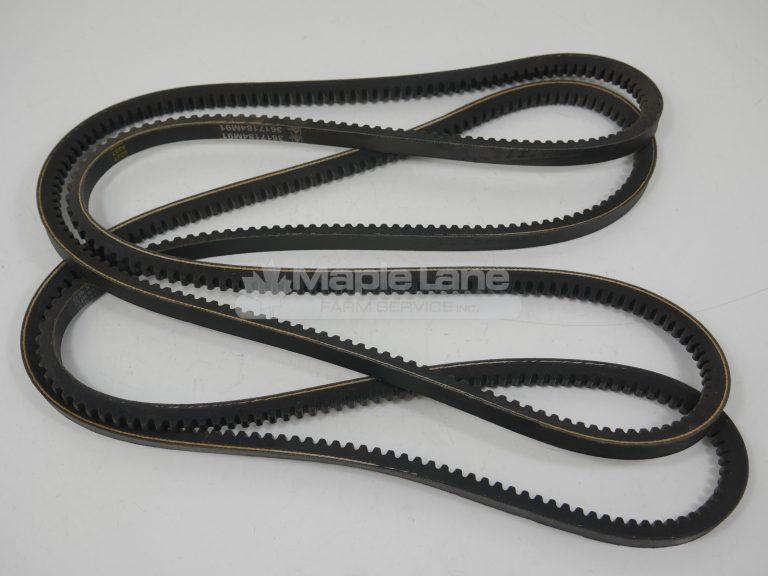 3617184M91 Belt Set