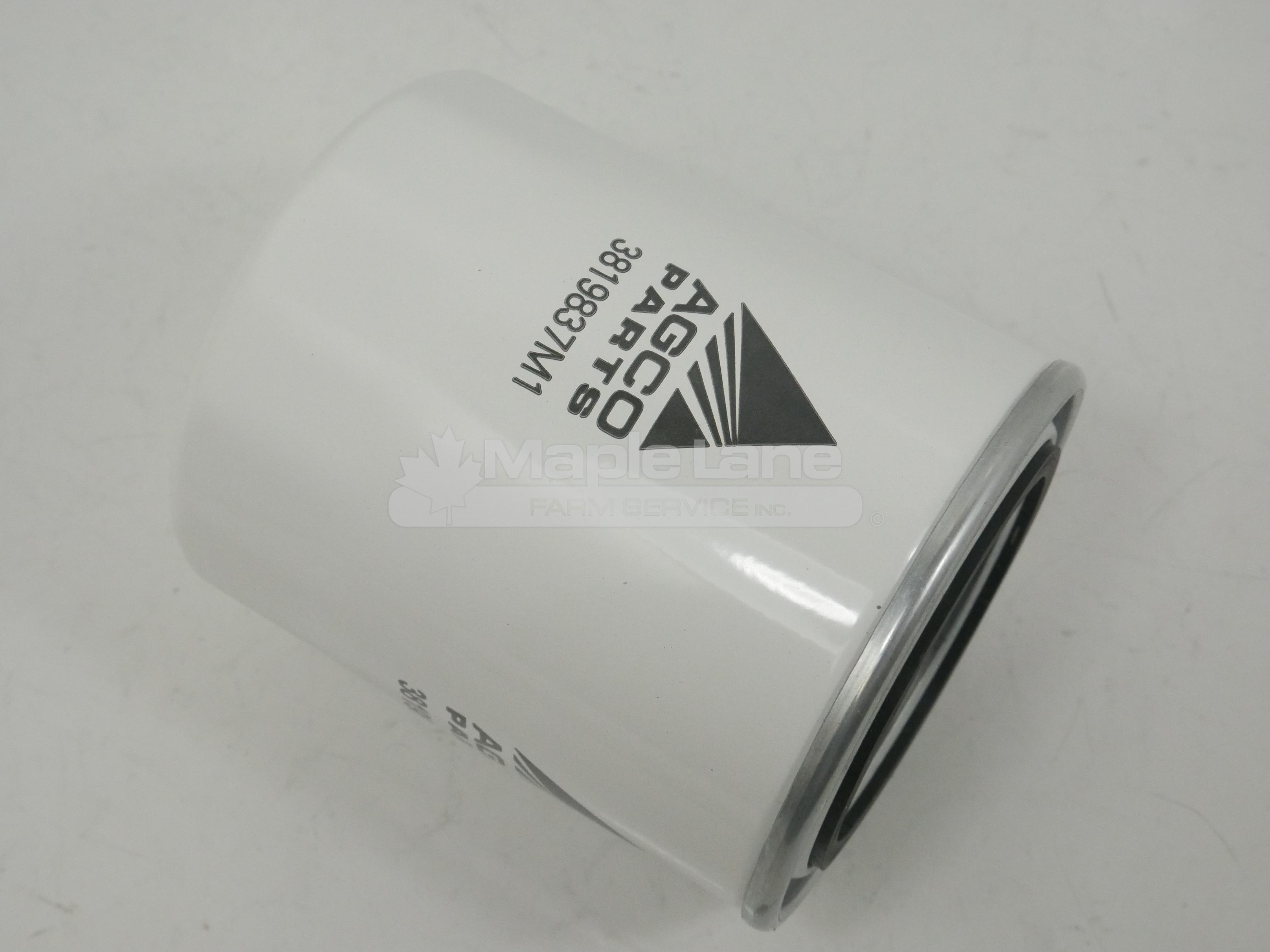 3819837M1 Oil Filter